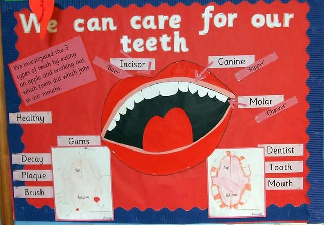 Primary Displays - Photographs and Examples of Primary Teaching ...