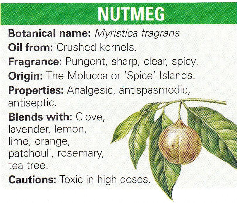 100 Online Free Detox Guide E Course Healing Herbs Essential Oils Herbs Magic Herbs