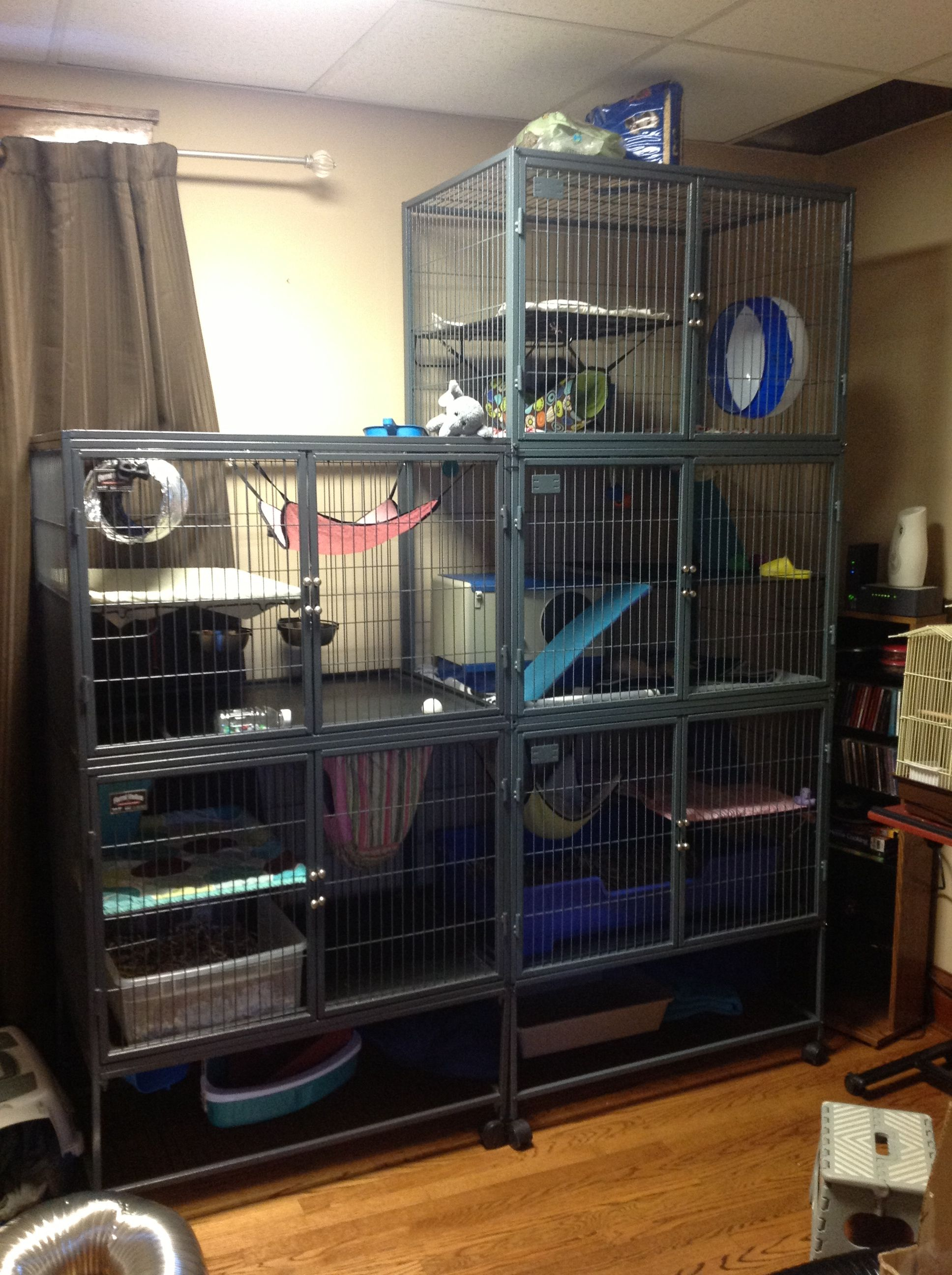 Pin By Jess Compton On Ferrets My Small Business Ferret Cage Rat Cage Ferret Cage Diy