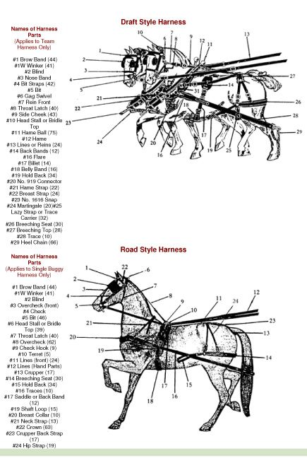 Horse    Drawn Wagon Parts    Diagram      The Wagon