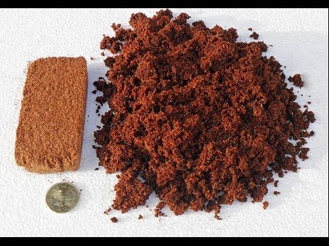 How to use coco peat how to make bonsai soil urdu hindi for Three uses of soil