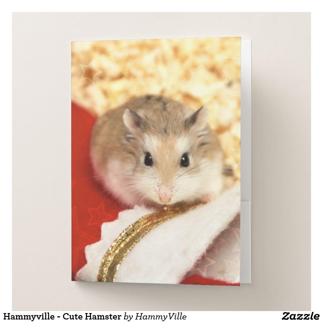 Hammyville Cute Hamster Pocket Folder Zazzle Com Cute Hamsters Cute Fun