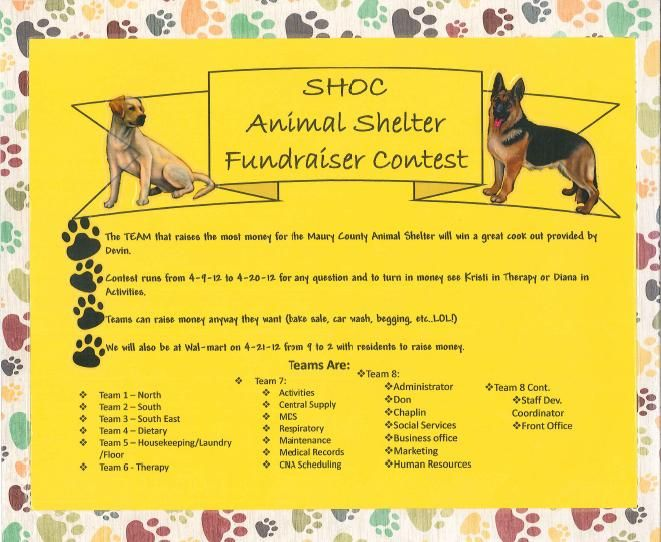Local Animal Shelters Are Always Accepting Help Whether It Be Volunteer Work Food Or Money A Possibili Animal Shelter Animal Shelter Fundraiser Fundraising