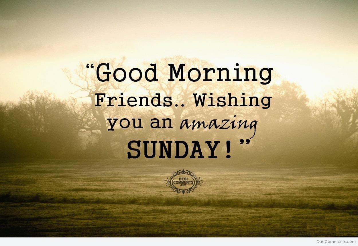 Good Morning Friends, Wishing You An Amazing Sunday good