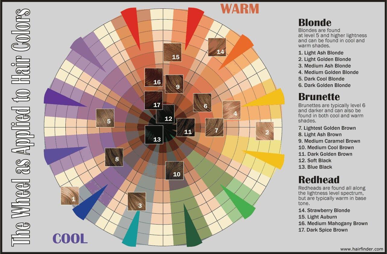 Hair color wheel hair pinterest hair color wheel urmus Images