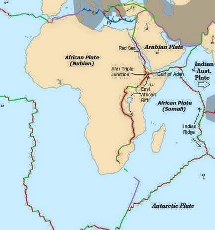 Africa tremor