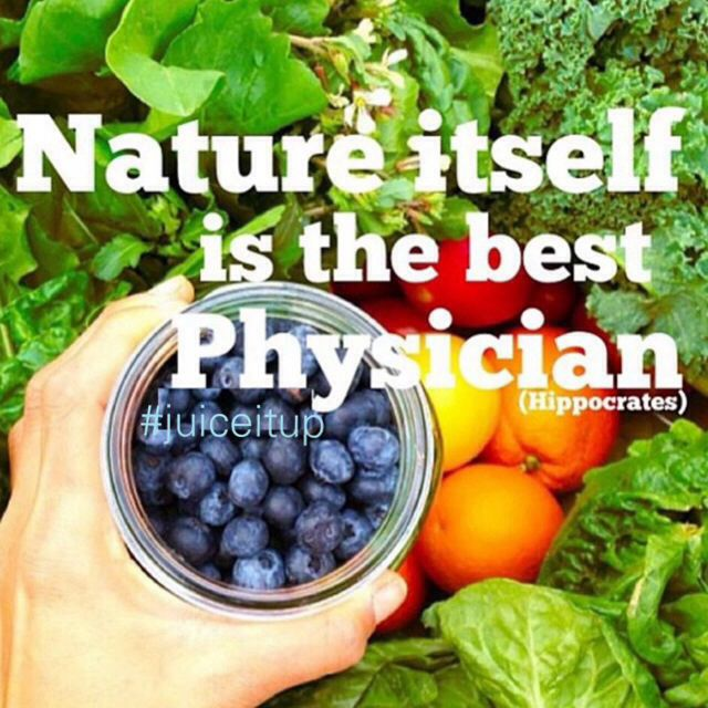 """Hippocrates Quotes: Hippocrates Quote """"Nature Itself Is The Best Physician"""