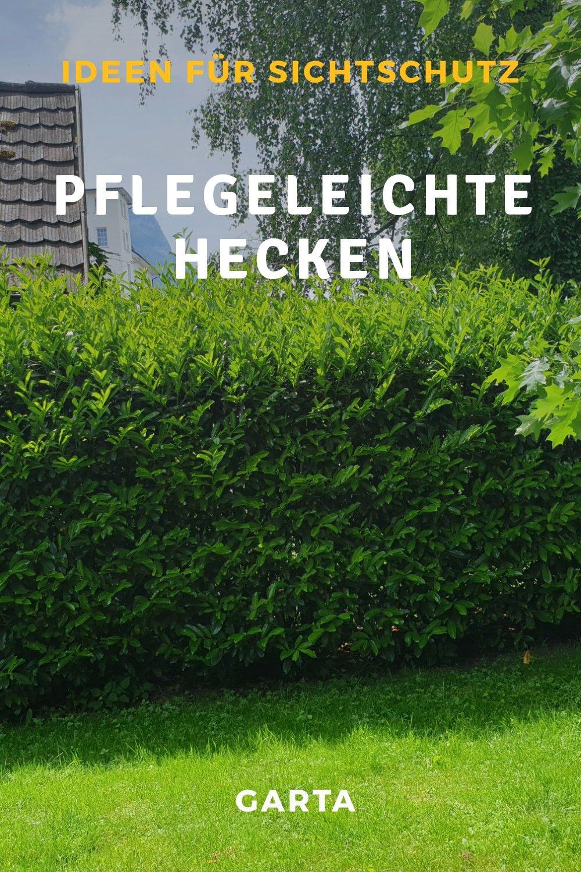 Pflegeleichte Hecken Ideen Fur Blickdichte Und Einfach Zu Pflegende Grune Winterharte Hecken Pflegeleichte Gartengestaltung Garten Hecke