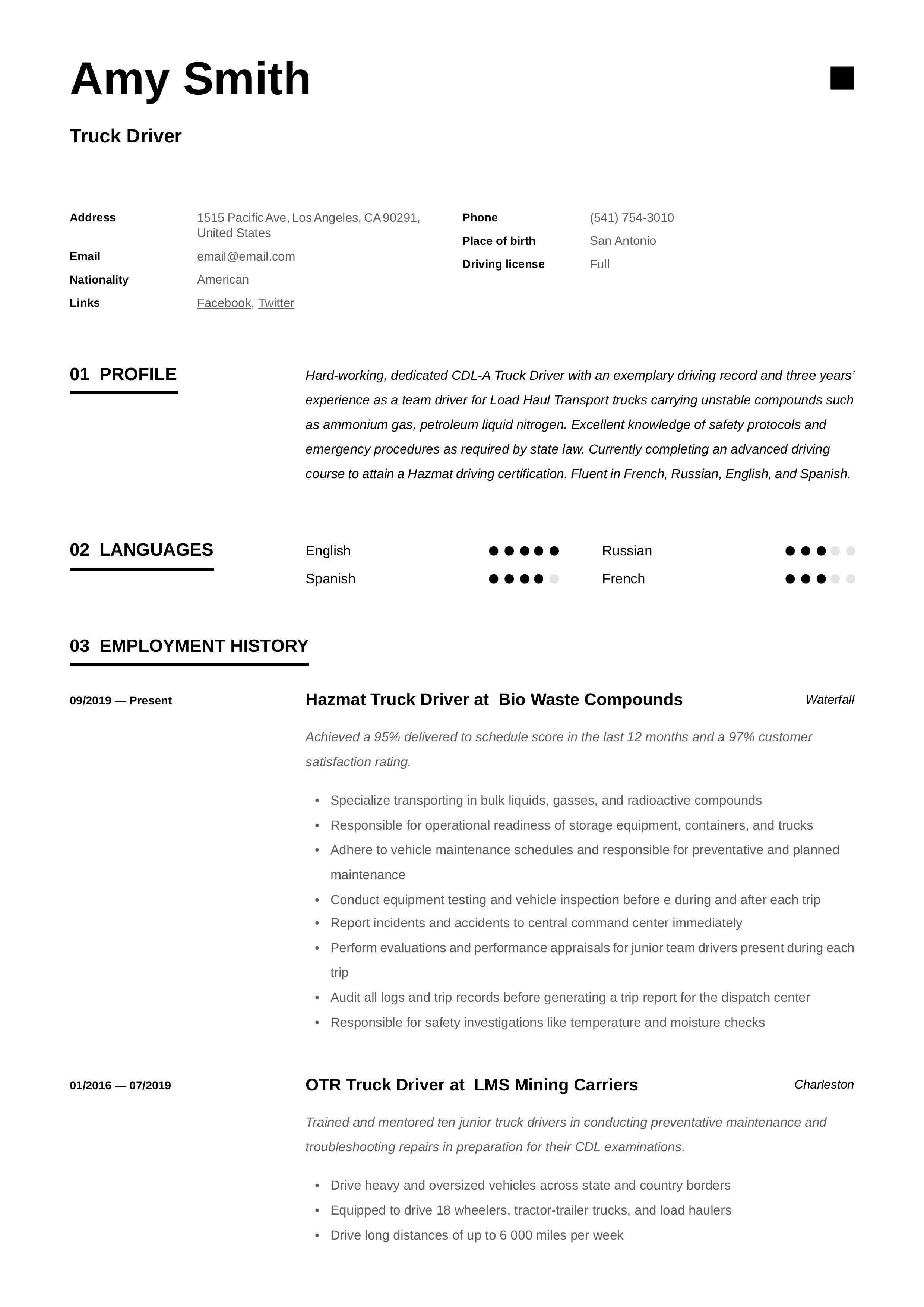 Pin By Resume Viking On 12 Truck Driver Resume Examples Trucks