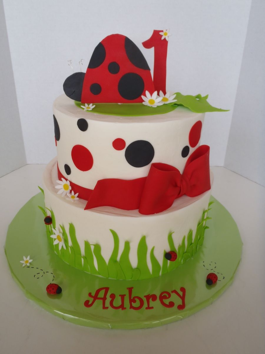 Ladybug First Birthday Cake Avas First Birthday Pinterest