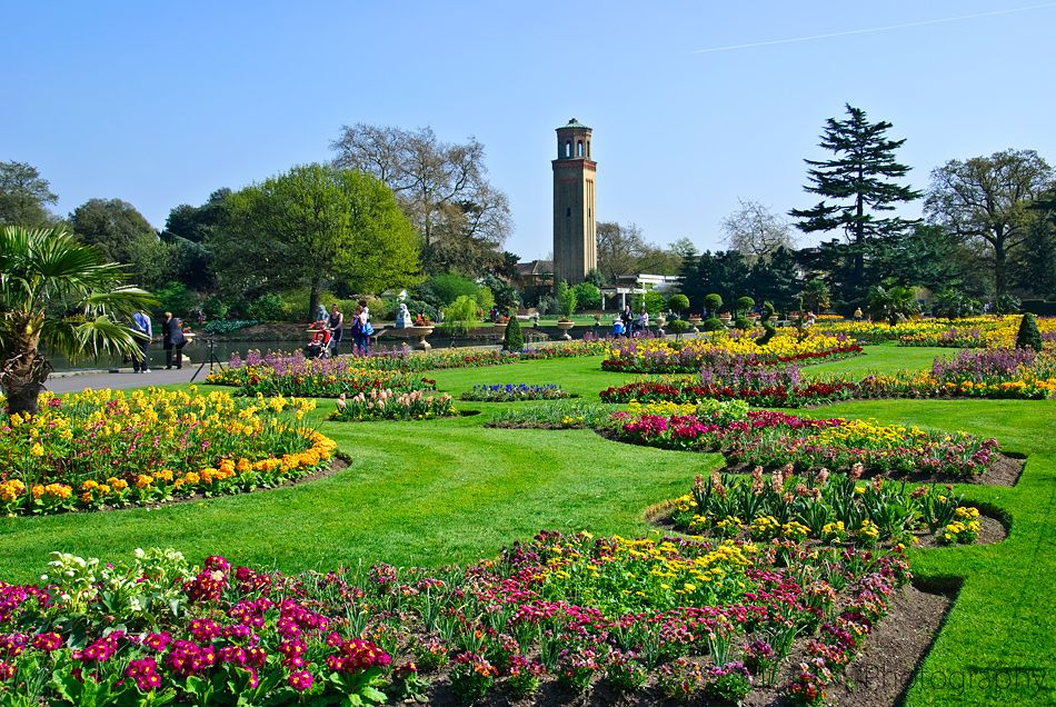 Wonderful Visiting Kew Gardens   London, England