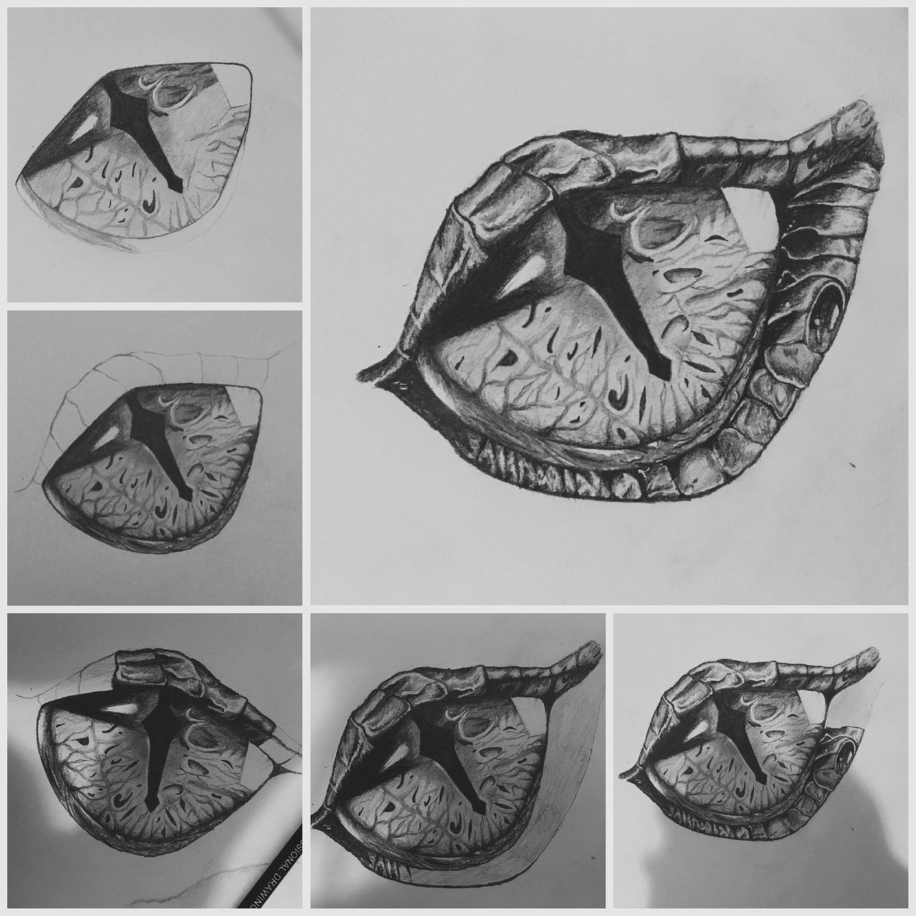 Dragon eye dragon drawing draw eye art beautiful