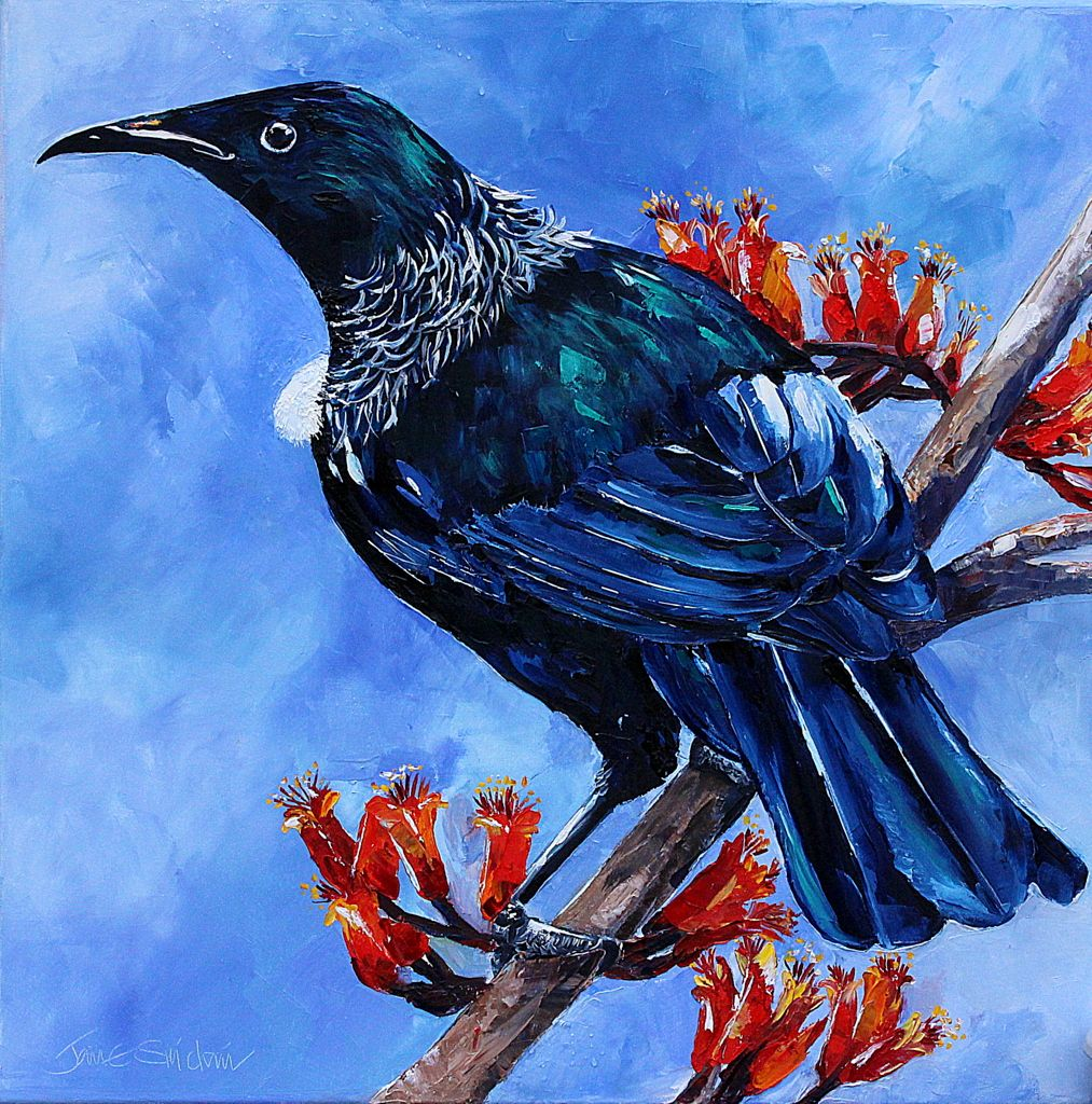 New Zealand Native Tui Painting Painting Canvas Painting Artist