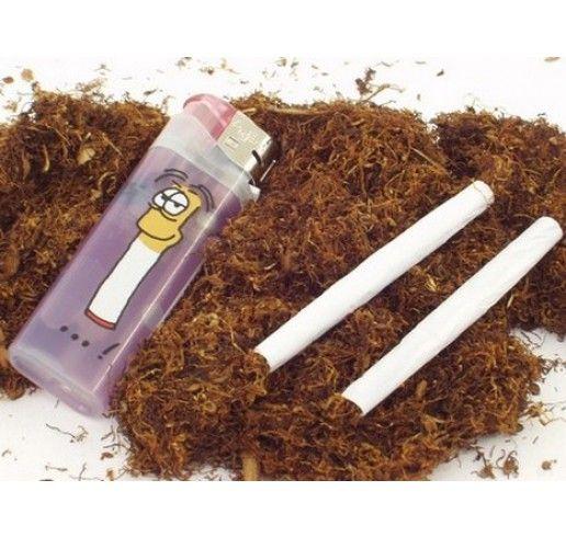 Nicotiana tabacum / Tabak, K12