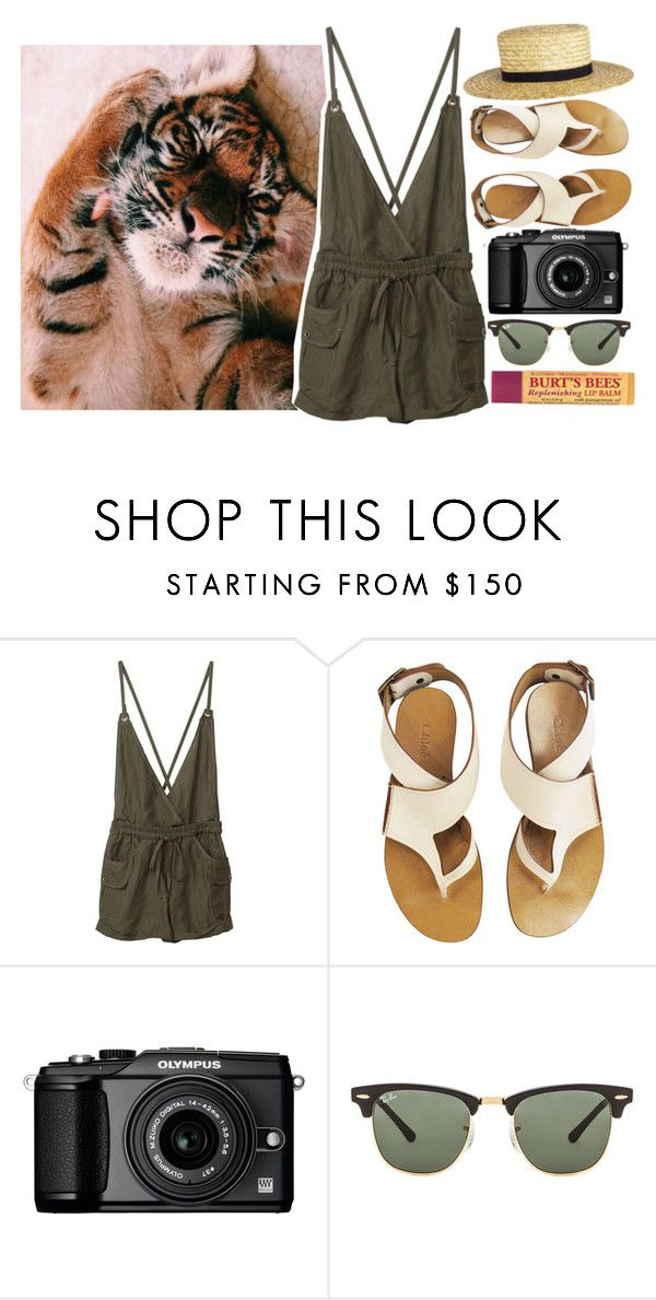 """""""Say love, say for me love"""" by sunflower-look ❤ liked on Polyvore featuring Chloé, CÉLINE, Olympus, Ray-Ban and Burt's Bees"""