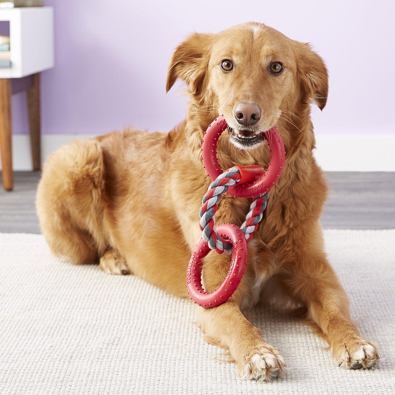 Dogzilla Lockin Links Dog Toy Small Chewy Com Dog Toys Dogs