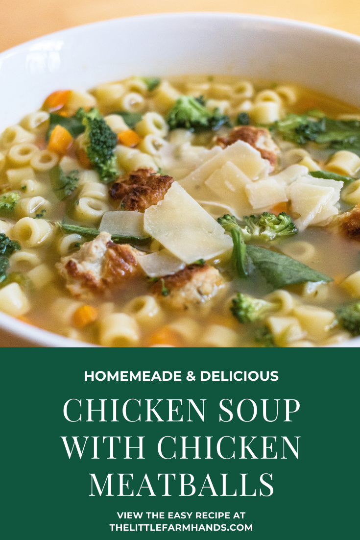 Homemade Chicken Soup With Chicken Meatballs Recipe