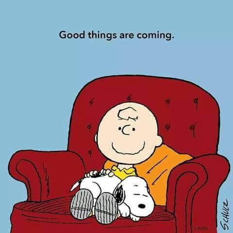 Boa Noite Boa Noite T Snoopy
