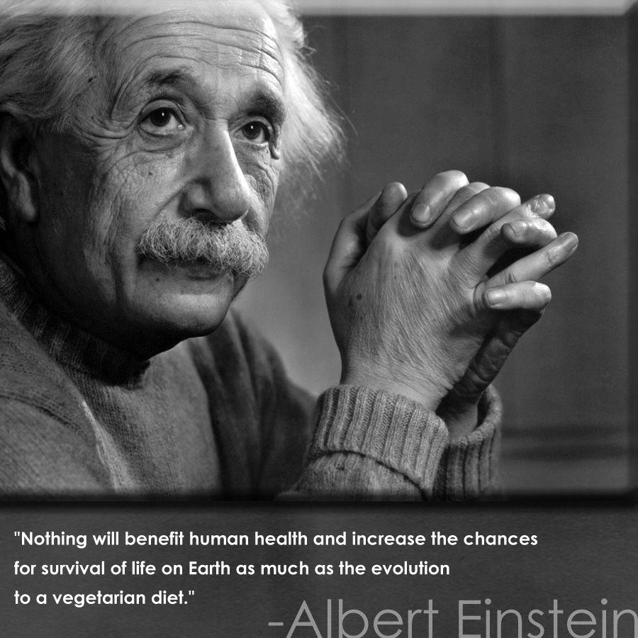 Albert Einstein Ameatfreemonth Org Animalwelfare Animalrights Einstein Quote Inspiration Vegan