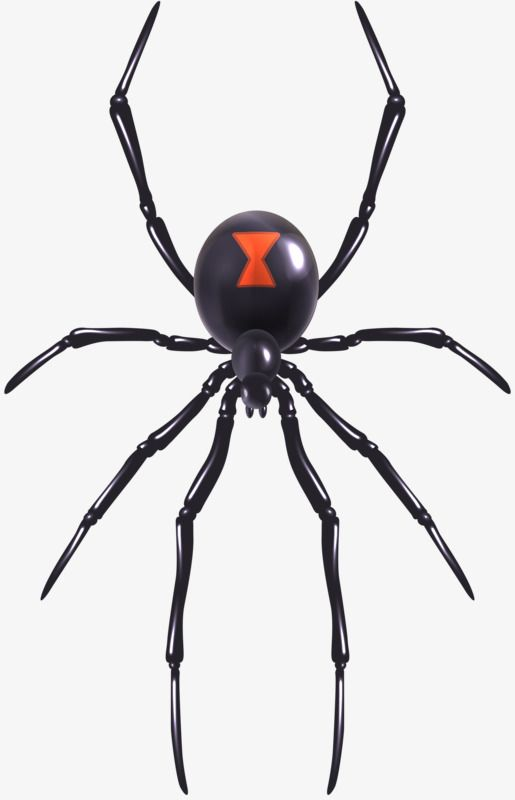 Toys Spider Toys Clipart Spider Clipart Toy Png Transparent Clipart Image And Psd File For Free Download Spider Tattoo Black Widow Tattoo Black Widow Spider Tattoo