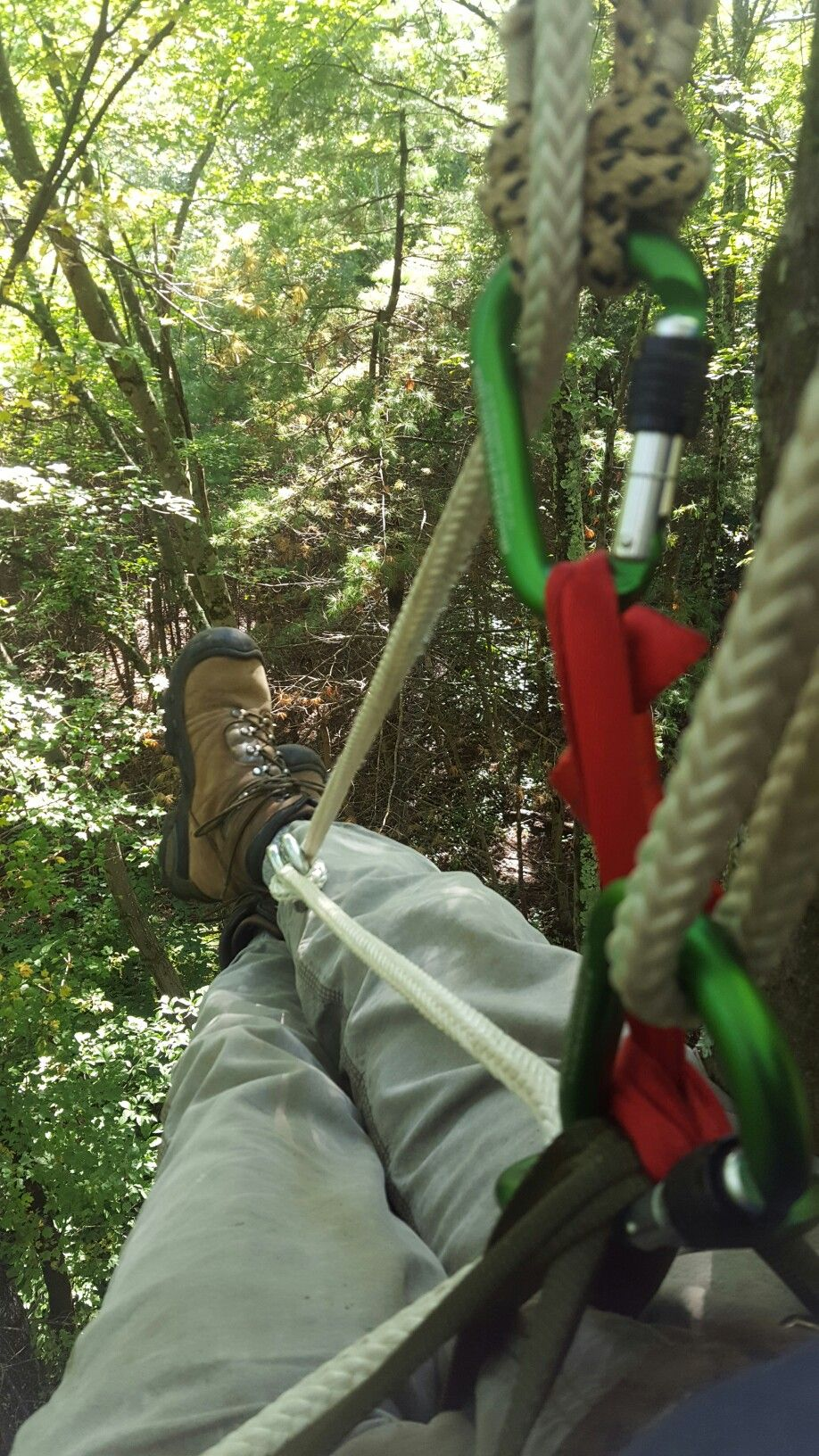 5acdabc74df Garda hitch foot ascender for drt or srt tree climbing