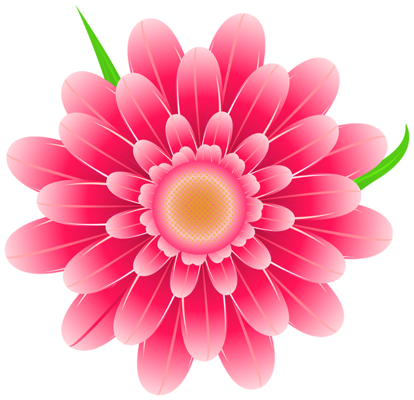 Transparent Pink Flower Clipart PNG Image Flower images