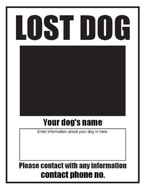 missing dog sign template