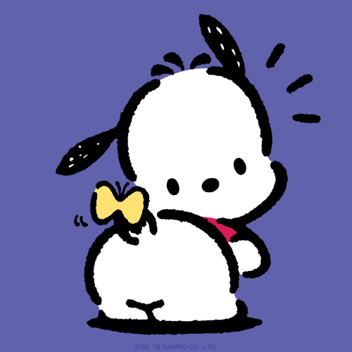 Image result for pochacco
