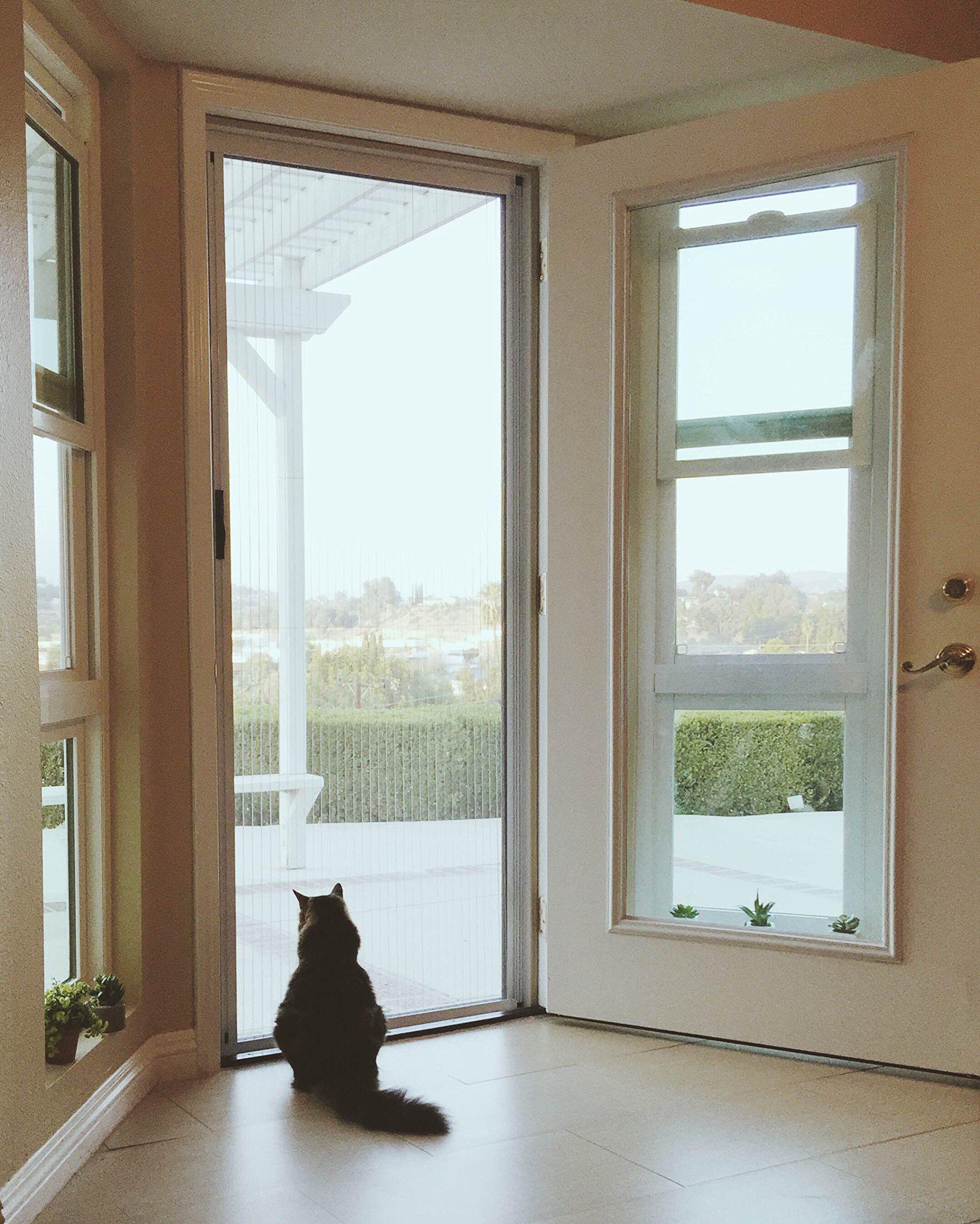 Blinds and shades store diy retractable screen door