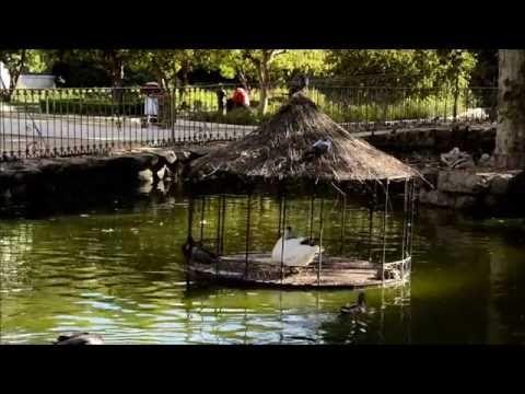 JARDINES DEL CAMPO DEL MORO BY RFSK - YouTube