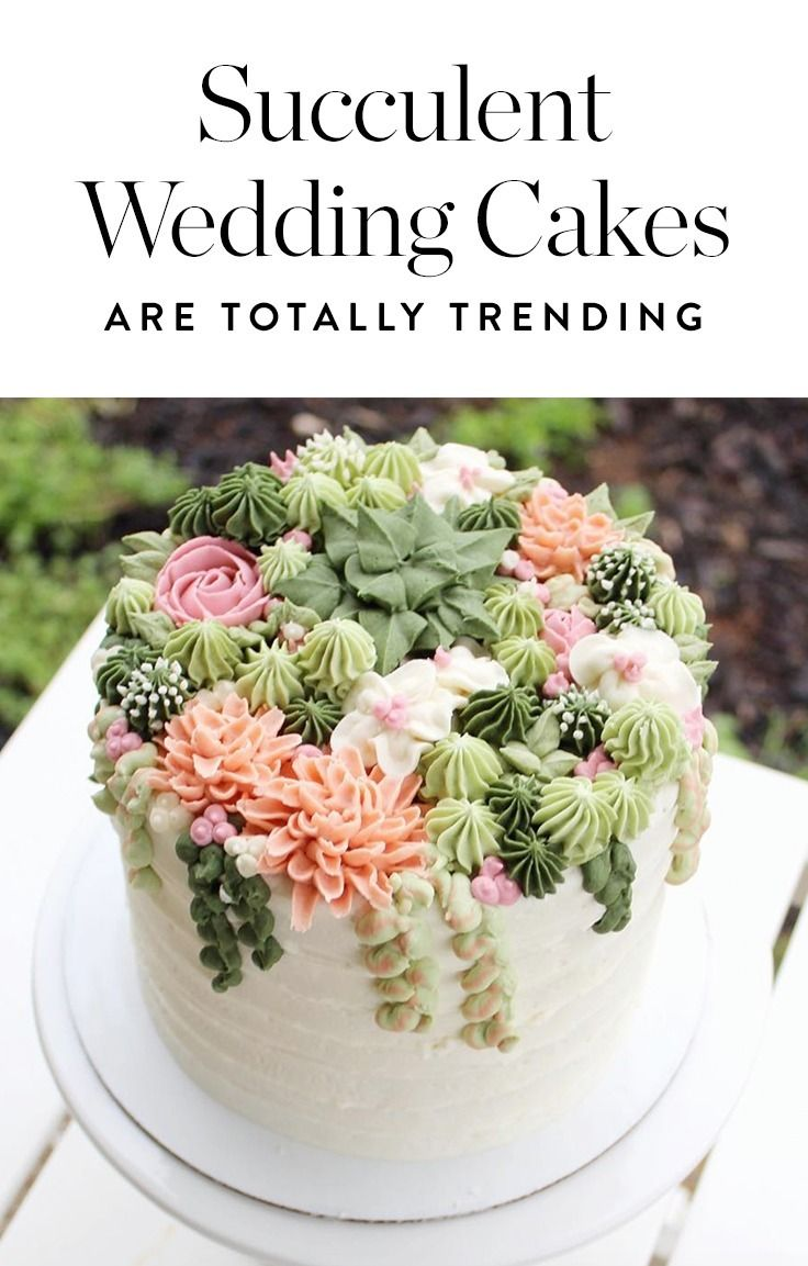 Succulent Cakes Will Be At Weddings Everywhere This Summer