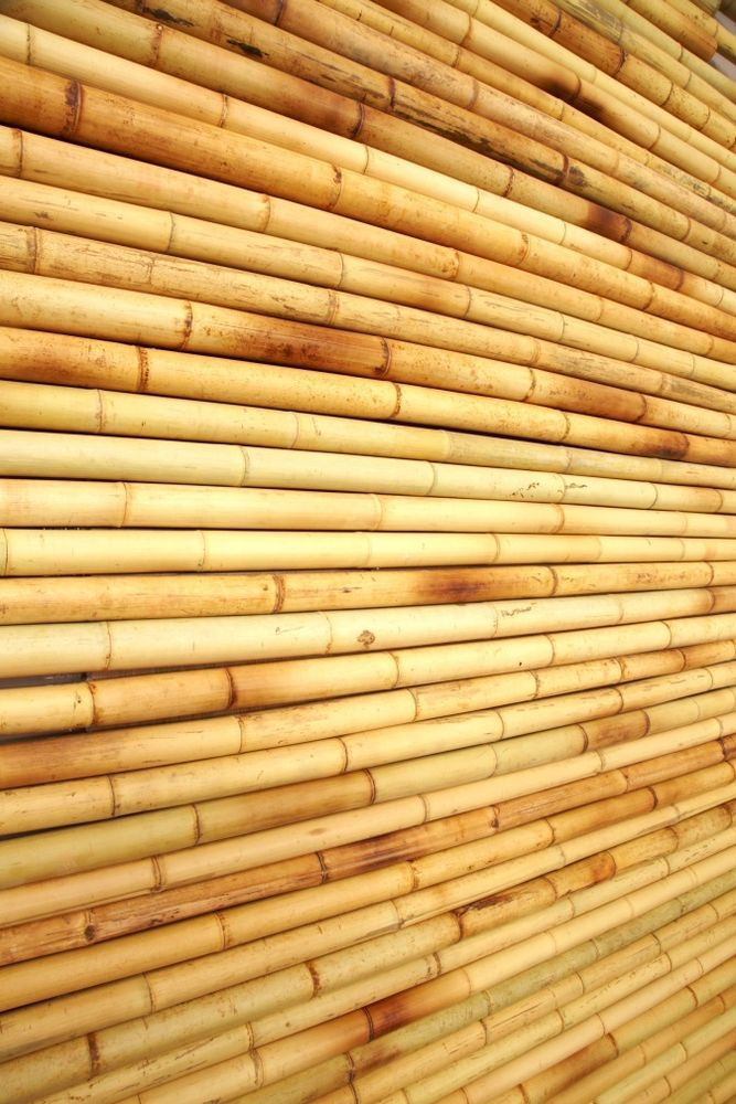 Tropical bamboo wall covering panels home decor easy to for Bamboo wall art