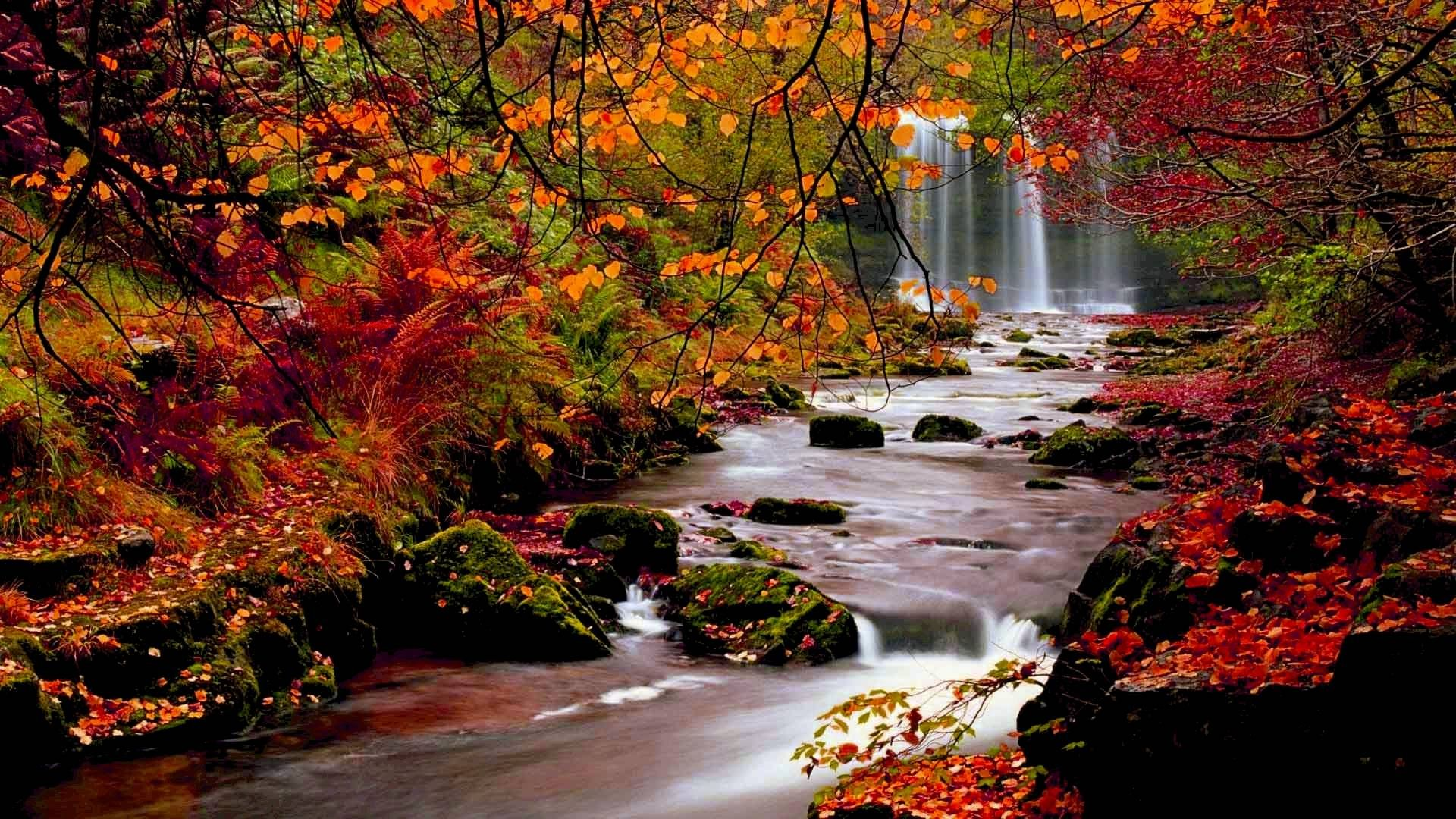 Seriously Fall Is My All Time Favorite Season From The Beautiful Colors Of The Leaves To The Yumminess Autumn Landscape Desktop Wallpaper Fall Autumn Scenery