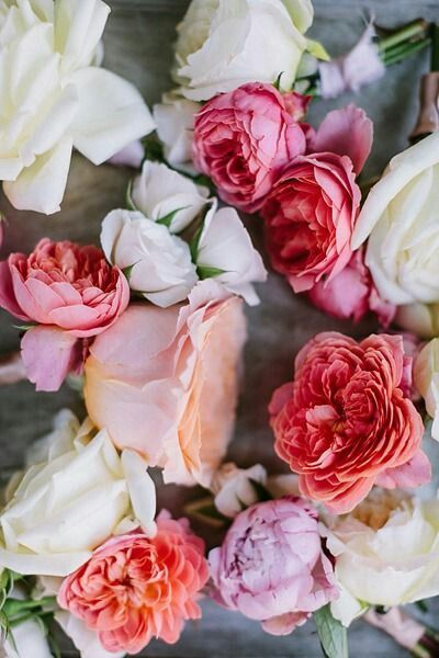 Pin by pate st clair on flowers pinterest flowers flower power there are so many beautiful reasons to be happy quote mightylinksfo