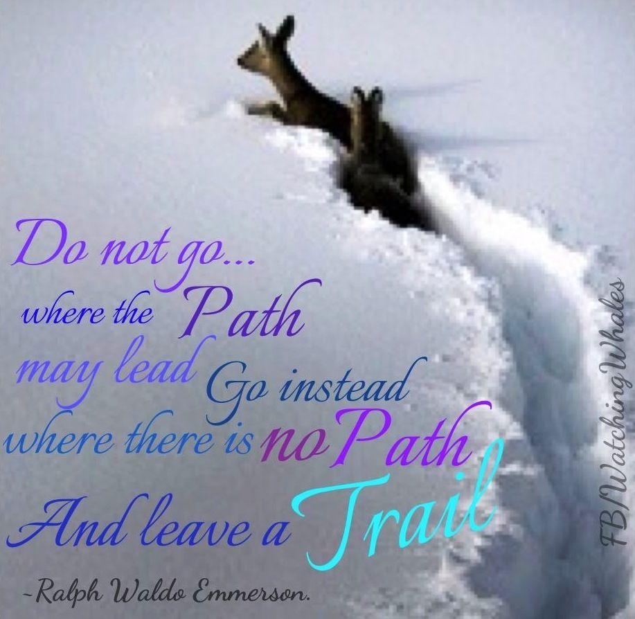 Leave a trail quote via
