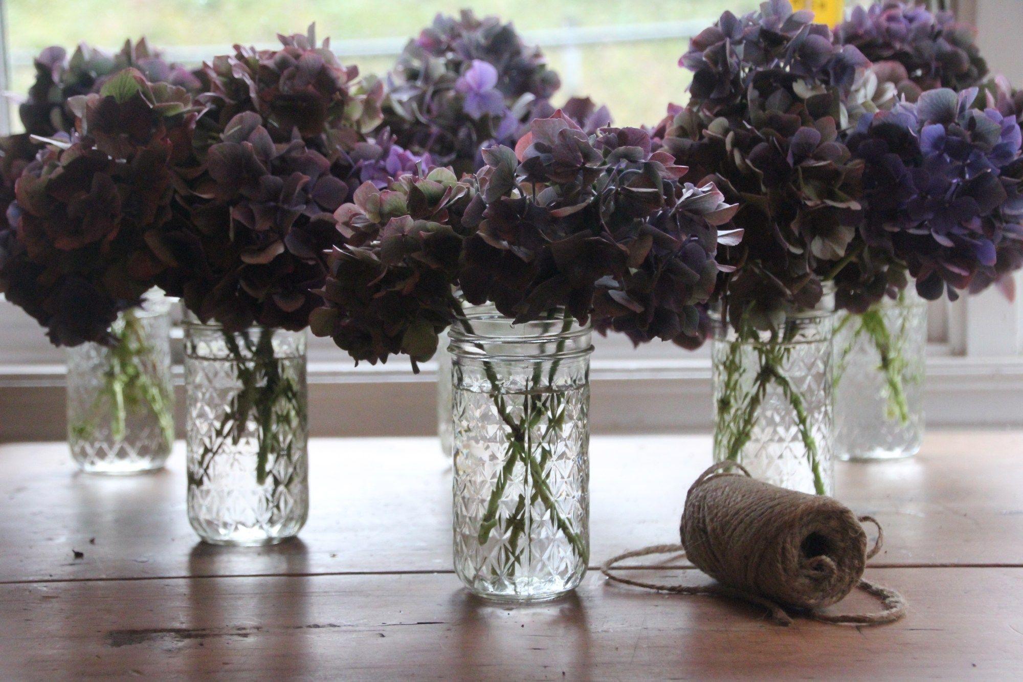 How To Dry Hydrangeas And Make A Dried Hydrangea Wreath A Country Girl S Life In 2020 Dried Hydrangeas Dried Flowers Hydrangea