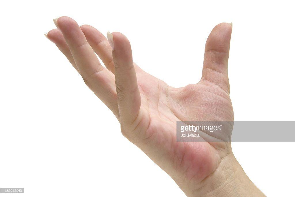 Female Hand Holding Something White Background Hand Holding Something Hand Reference Human Reference