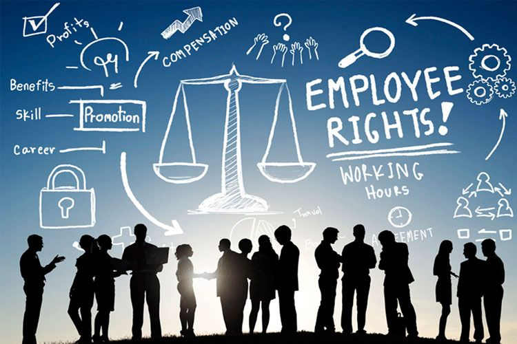 Our Firm Only Handles A Limited Number Of Employment Litigation Cases This Model Allows Us To Provide The Highest L Employment Law Employment Legal Services