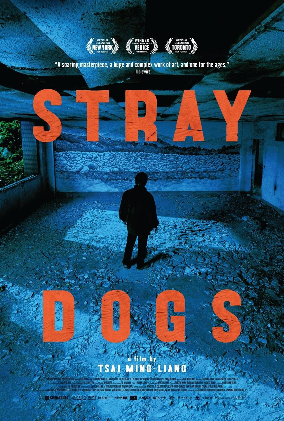 Stray Dogs (2013) Dog poster