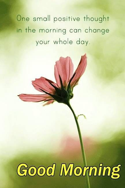 Lovely Good Morning Quotes One Small Positive Thought In The Morning