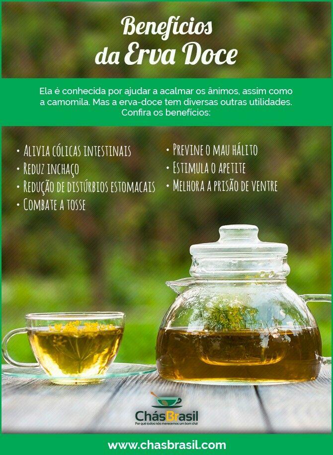 Benefícios da Erva doce - Ervas