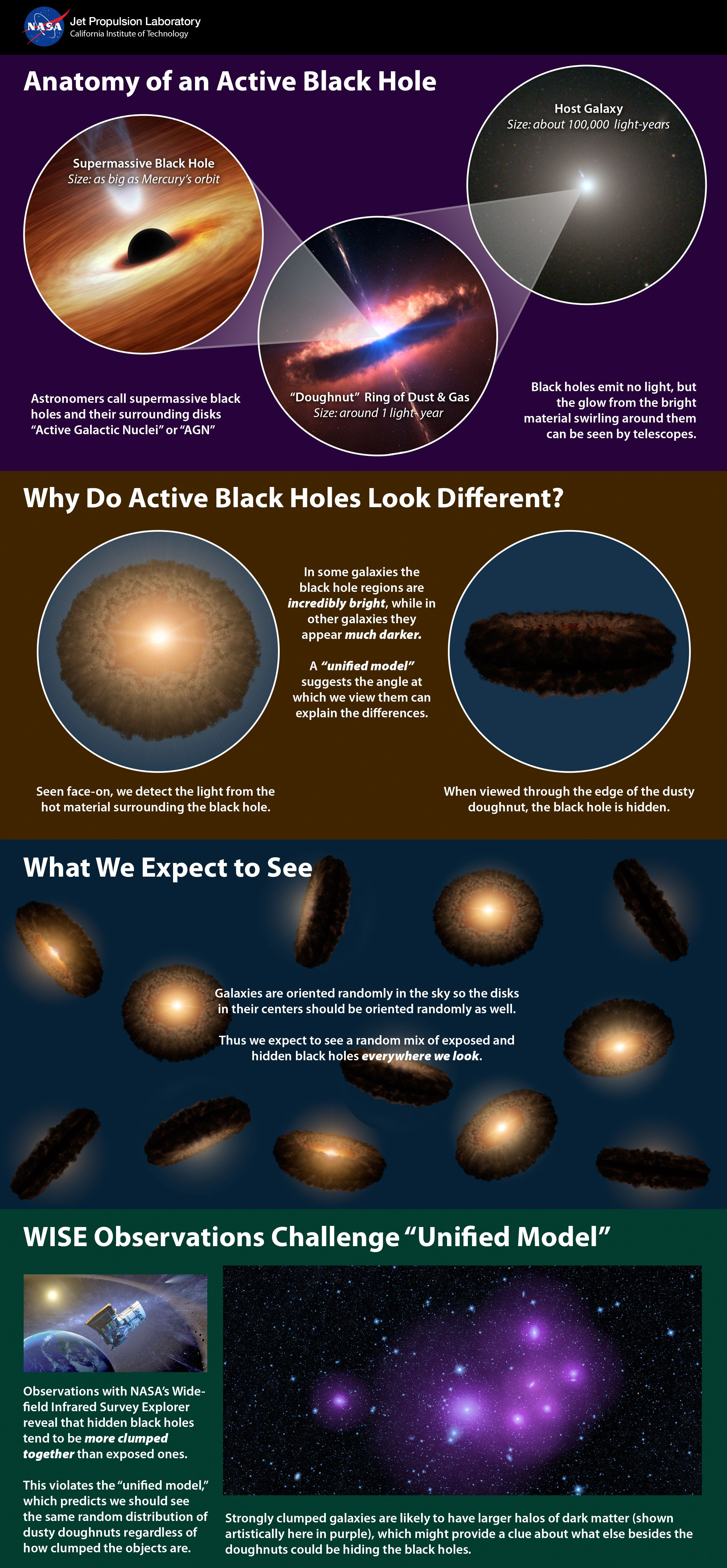 Unified, or 'Doughnut,' Theory of Active, Black Holes  This infographic from NASA explains a popular theory of active supermassive black holes, referred to as the unified model -- and how new data from NASA's Wide-field Infrared Survey Explorer, or WISE, is at conflict with the model. Astronomers say the model could still be correct but needs adjusting to account for the unexpected observations by WISE. #BlackHoles