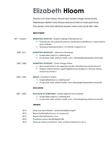 Blue Side Google Docs Resume Template