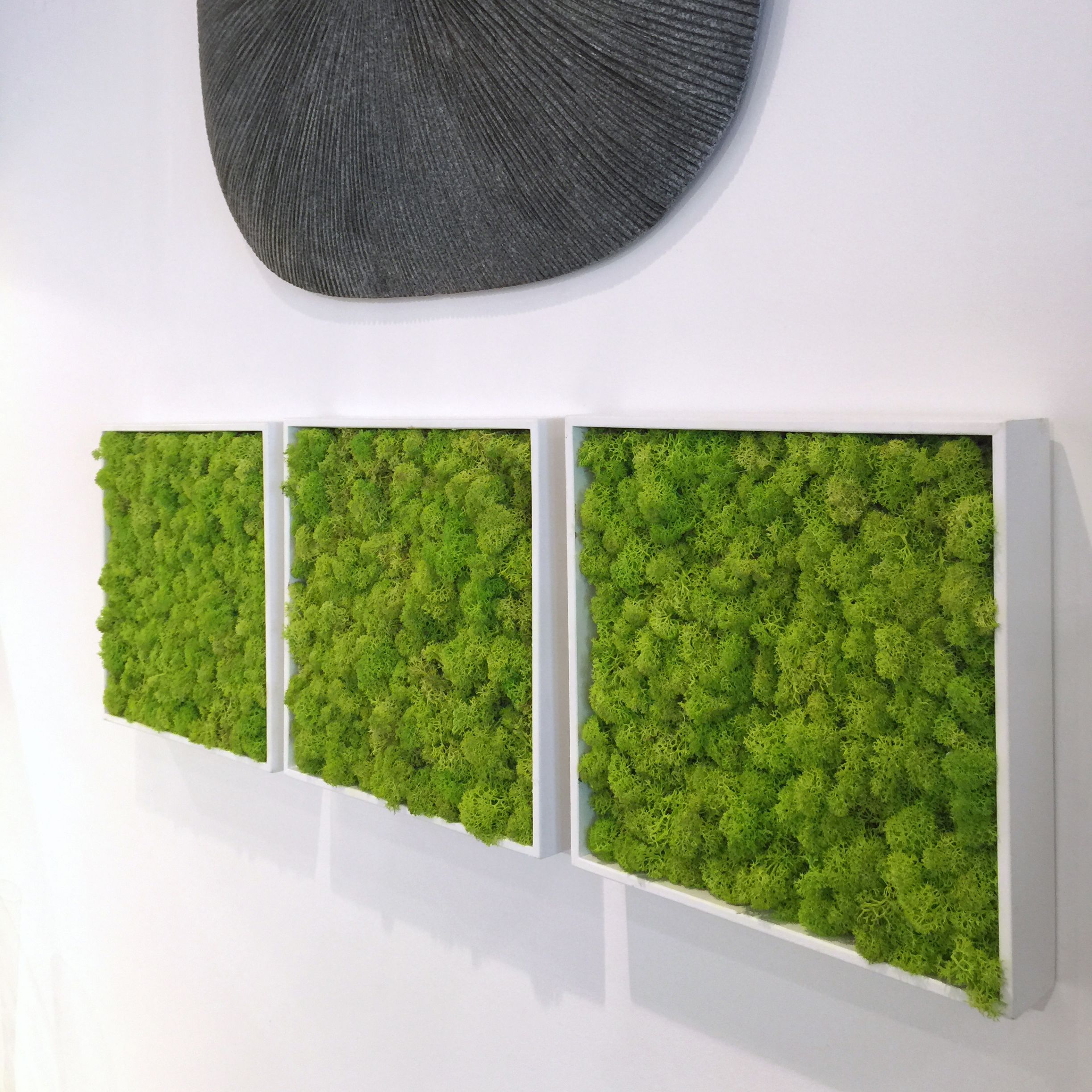 Add A Pop Of Color With These Stunning Botanical Moss Tiles Spring Green Preserved Placed In Wooden Frame Art Pieces Will Hang Style