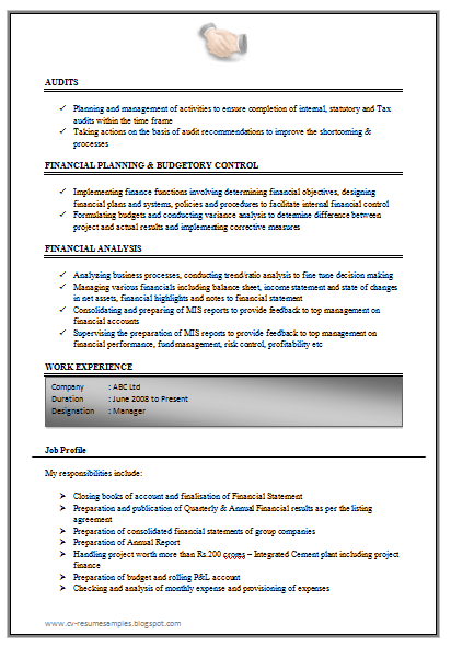 Excellent Work Experience Chartered Accountant Resume Sample Doc