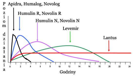 Hormone  chemical talk insulin types their duration peaks chart also rh pinterest