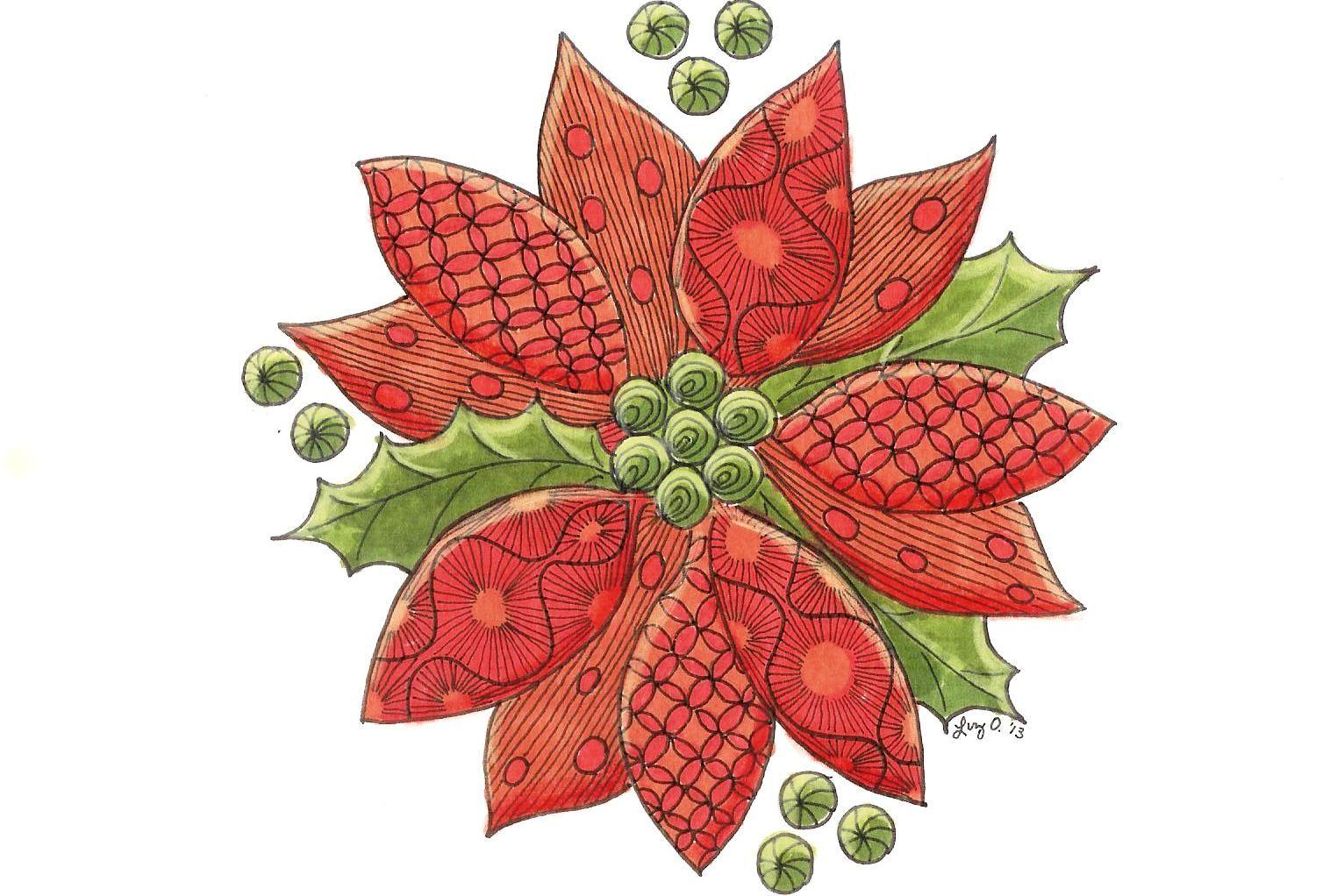 Poinsettia & Holly   Christmas Cards   Pinterest
