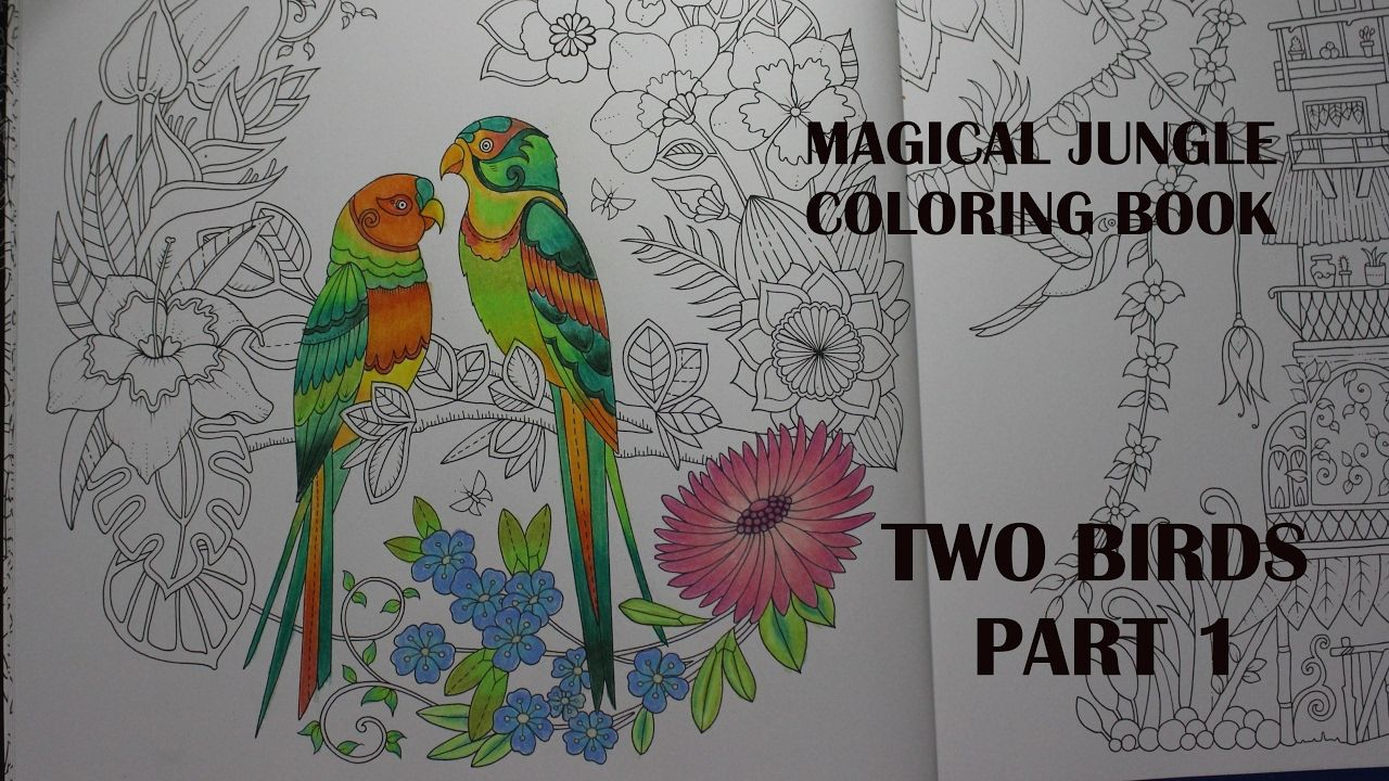 two birds part 1 magical jungle magical jungle colouring