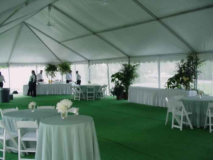 Omaha Party Tent With Green Carpet Backyard Tent Wedding Backyard Tent Tent Wedding Reception