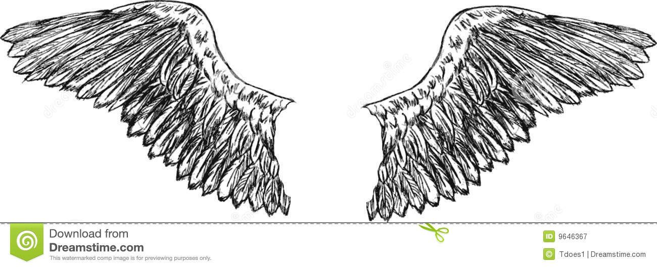 Eagle Wings Vector Royalty Free Stock Photography - Image: 9646367